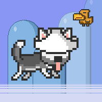 Mr Jump Husky Online Game
